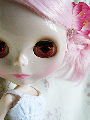 Pale & Pink Lamb